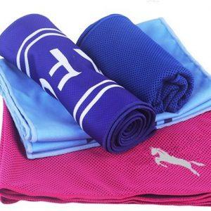 sports direct microfibre towel